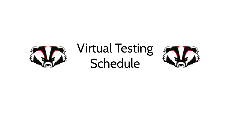 Virtual Student Required Testing