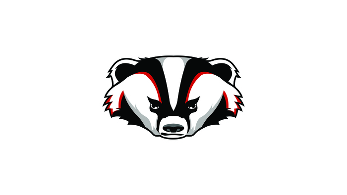 Badger_Head-01_1___2_.jpg