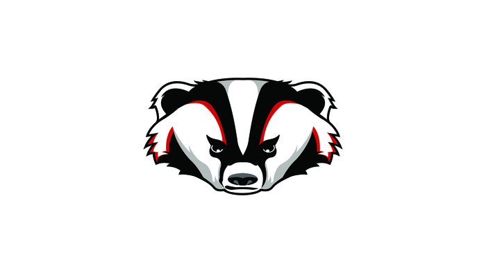 Large_badger_head-01_1___2_